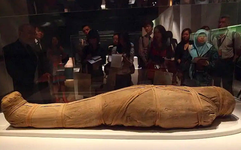 Ritrovamento di una antica mummia